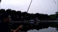 2017年新發明 世界上最小的全自動釣魚竿 全自動釣魚漂3.31