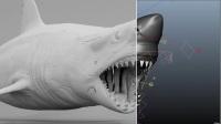 驚悚電影《鯊灘》特效揭秘,不光有S美好的身體,那逼真的鯊魚特效更是讓我長跪不起啊