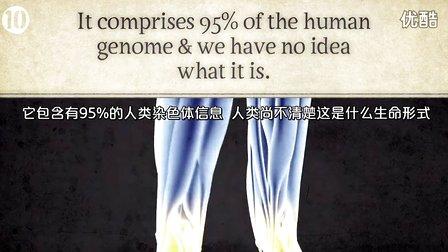 10大关于人类身体的未解之谜